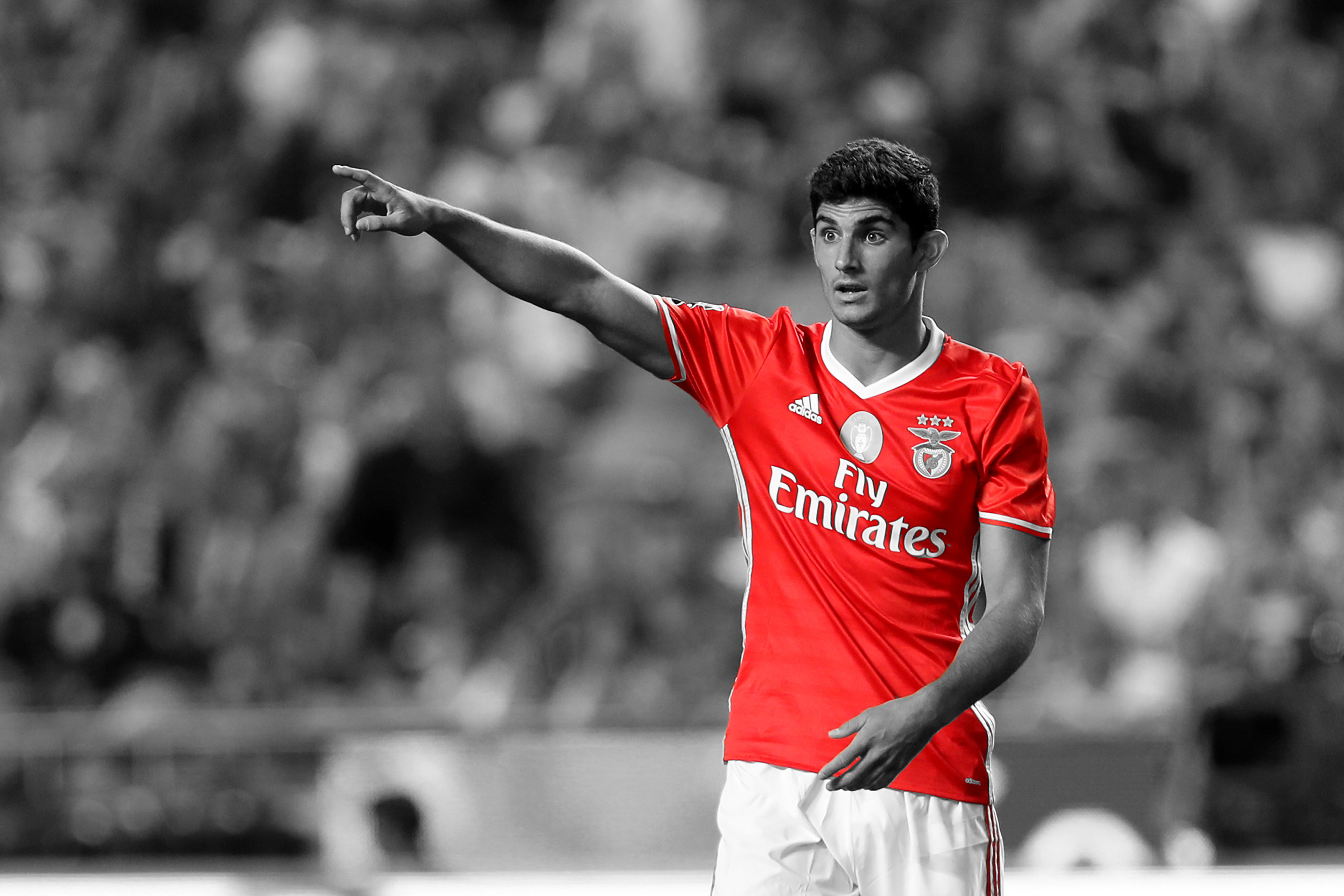 Arsenal Eye Benfica Starlet