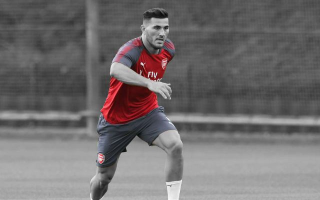 Garth Crooks Hails Arsenal's Sead Kolasinac As 'Signing Of The Season'