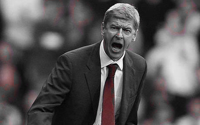 Arsenal Legend Expects Wenger To Stay