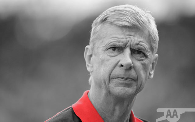 Wenger Plotting £30m Bid For Established Premier League Striker
