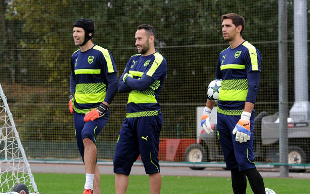 Arsenal Squad Overview: Goalkeeper – Who Stays And Who Goes Out Of Szczesny, Ospina And Cech?