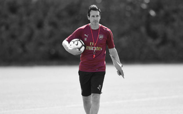 Pictures: Unai Emery Takes First Arsenal Training Session