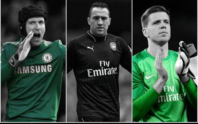 Comparing Arsenal's goalkeepers, with Szczesny and Cech set to battle for top spot
