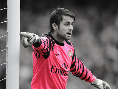 2013 Expiring contracts: Lukasz Fabianski [Part 5]